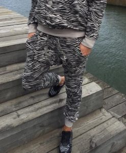 annemi-zebra