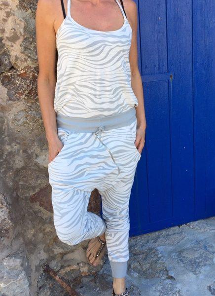 zebra-gravit2