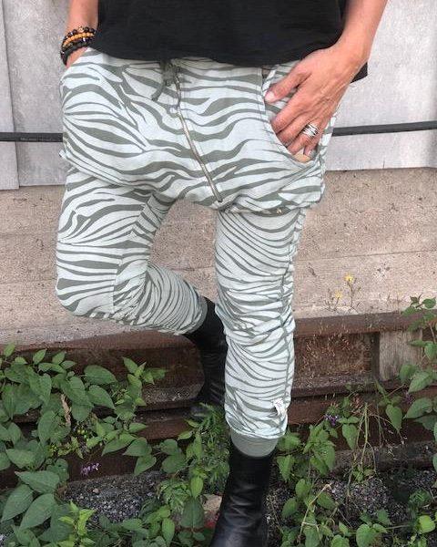 annemi-zebra-gron