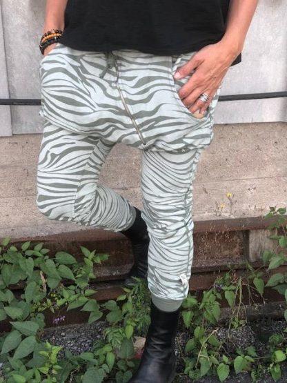 annemi zebra grön