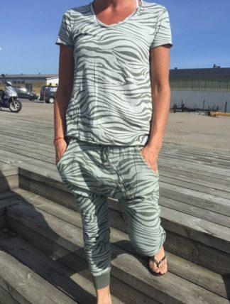 zebrakläder