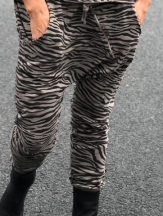 annemi zebra